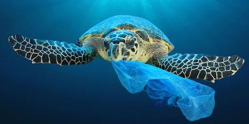 Plastic Pickup: Pre-Marine Debris
