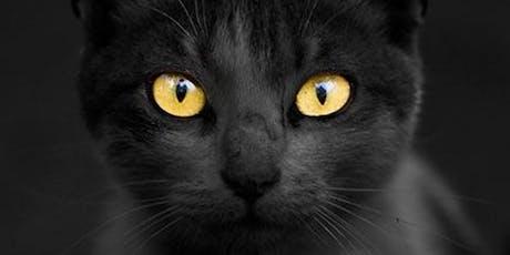 Feline Information Night tickets