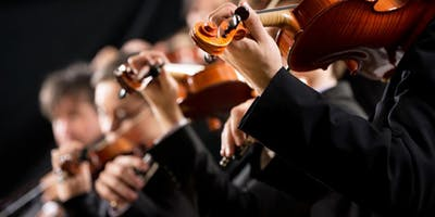 Beethoven's Symphonies: An Artistic Vision at Erina Library