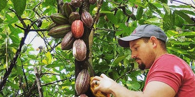 Cacao Orchard Tour and Chocolate Tasting