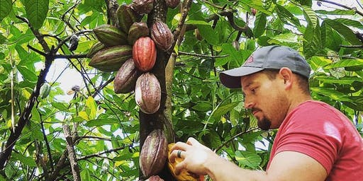 Kona Cacao Orchard Tour and Chocolate Tasting