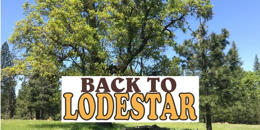 Back To Lodestar 2020!