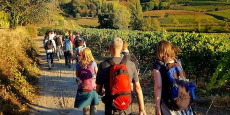 """So,01.09.19 Wanderdate """"Buddhas Panoramaweg im Odenwald für 30-49J"""" Tickets"""