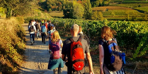"""So,01.09.19 Wanderdate """"Buddhas Panoramaweg im Odenwald für 30-49J"""""""