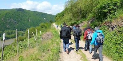 """So,01.09.19 Wanderdate """"Singlewanderung - Rheinsteig von Lorch nach Rüdesheim für 40-65J"""""""""""
