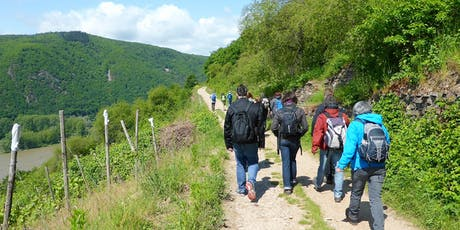"""So,01.09.19 Wanderdate """"Singlewanderung - Rheinsteig von Lorch nach Rüdesheim für 40-65J"""""""" Tickets"""