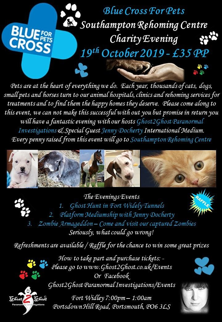 Southampton Rehoming Centre for Animals - Charity - Fort Widley £35.00 image