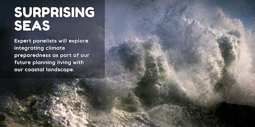 Surprising Seas