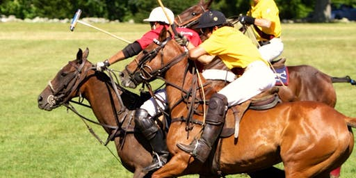 Golds Dragoons Polo 2019