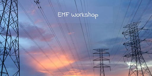 EMF Workshop