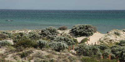 Useful Plants of the Tennyson Dunes with Neville Bonney