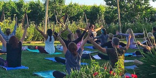 Uncork & Unwind: Sunset Yoga in the Vineyard