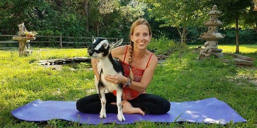 Goat Yoga (FUNdraiser!)