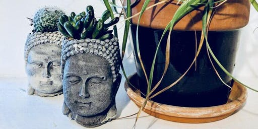 Create a Buddha Planter with Freckle Face
