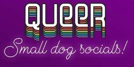 LGBTQ+ Dog Social in Brooklyn tickets