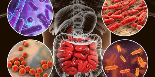 Autoimmune Disease Facts and Myths: Six Fast, Safe,  Affordable and Revolutionary Solutions for Complete  Recovery that Your Doctor Has No Idea Exist.
