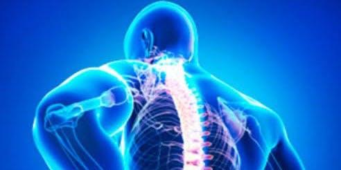 FREE Back Pain Seminar