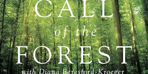 Film Screening of 'Call Of The Forest – The Forgotten Wisdom Of Trees'
