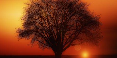 The Power of The Beautiful State - Sedona, AZ tickets