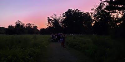 Nocturnal Wildlife Walk