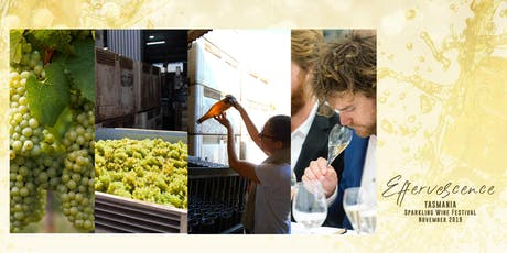 From Vineyard to the Bottle, the art of making and tasting sparkling wines tickets