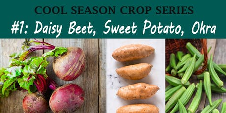Daisy, Beet, Sweet Potato, Okra Crop Families (Cool Season Crop Family Course) tickets