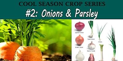 Onion & Parsley (Cool Season Crop Families Course)