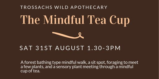 The Mindful Tea Cup - (forest bathing-mindfulness-foraging)