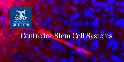 Stem Cell Partnerships: From bench to bedside