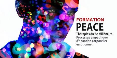 * FORMATION : MÉTHODE PEACE (Thérapies du 3e Millénaire) Avec Stéphane Drouet, auteur et formateur. billets