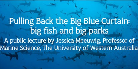 Pulling Back the Big Blue Curtain: big fish and big parks  BUSSELTON tickets