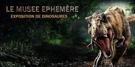 Le Musée Ephémère: Exposition de dinosaures billets