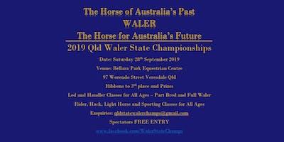Queensland Waler State Championships