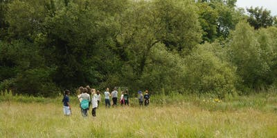 Nature Tours at St Cross Meadows