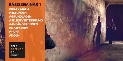 Krav Maga Basisseminar 1 - Grundlagen der Selbstverteidigung