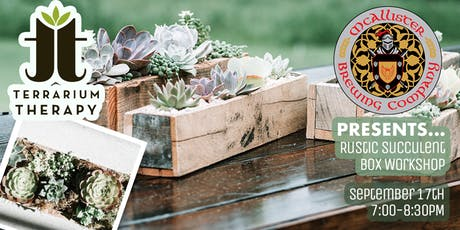 Rustic Box with Succulents Planter at McAllister tickets