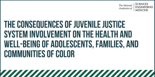 The Consequences of Juvenile Justice System Involvement: A Workshop