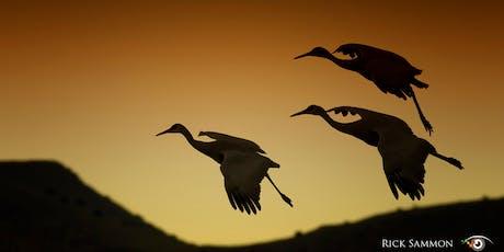 Breathing Bird Photography with Rick Sammon tickets