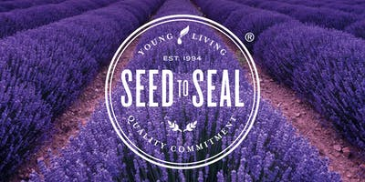 Lavender - Seed to Seal Experience 2020