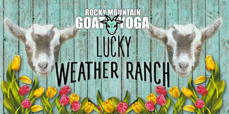 Goat Yoga - August 31st (Lucky Weather Ranch) tickets