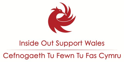 Inside Out Support Wales Launch Event