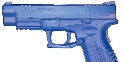Beginner's Stress-free Handgun Class