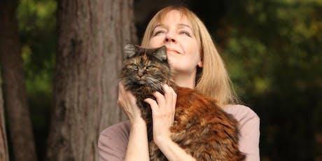 Verstehe deine Katze - finde dich selbst Tickets