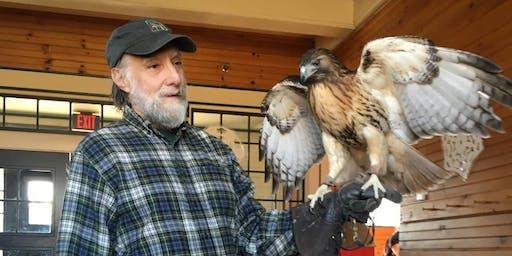 Hawks, Owls & Falcons!