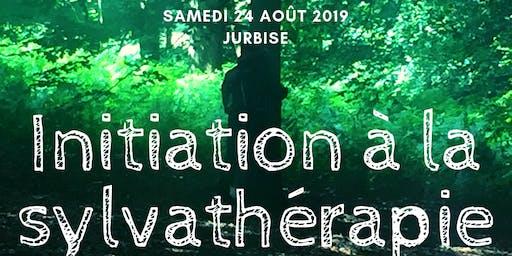 Initiation à la sylvathérapie vibratoire