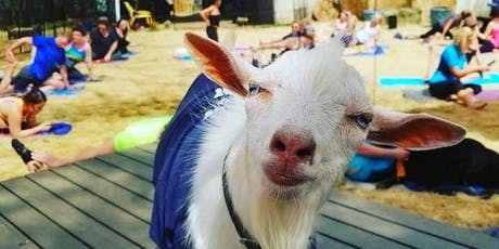 Light Up Night Goat Yoga! tickets