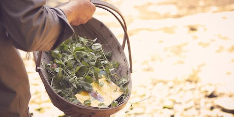 Foraging course tickets