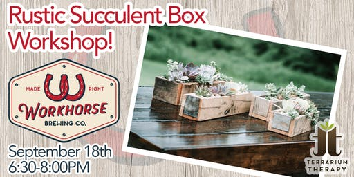 Rustic Box Succulent Workshop at Workhorse Brewing Company