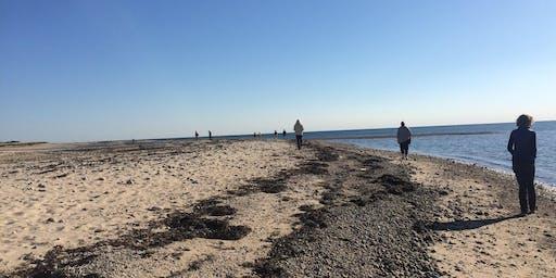 Mindful Meditation on the Beach