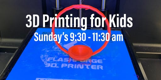 Envision Robotics: Introduction to 3D Printing Clinic for Kids, Markham & Thornhill